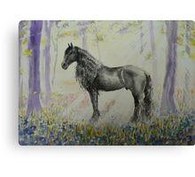 Wizzard's Magic Glade Canvas Print