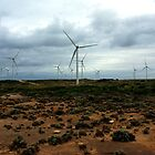 Cape Bridgewater Wind Turbines by hurky