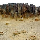 The Petrified Forest - Cape Bridgewater by hurky