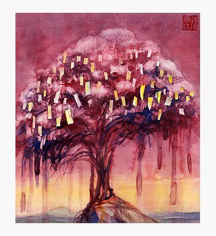 Prayer Tree II Photographic Print