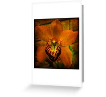 Antique Orchid Greeting Card