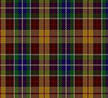 00373 Isle of Arran Personal Tartan  by Detnecs2013