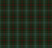 00376 Royal Army of Oman Tartan  by Detnecs2013