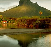 Gorilla Mountain reflected in Black River Mauritius by Mark Whitehouse