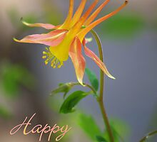 Columbine Notecard - Happy Easter by K D Graves Photography