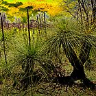 Grass Trees 2 by pennyswork