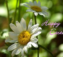 Daisy Notecard -  Happy Easter by K D Graves Photography