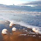 Foam along the tide line  by Adri  Padmos