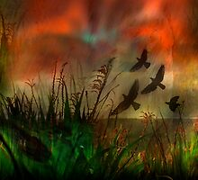 In the Meadow by linaji