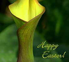 Yellow Lily Notecard -  Happy Easter! by Diana Graves Photography