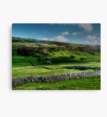 Light and Shade and Dry Stone Walls Canvas Print