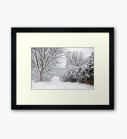 Winter Grace Framed Print