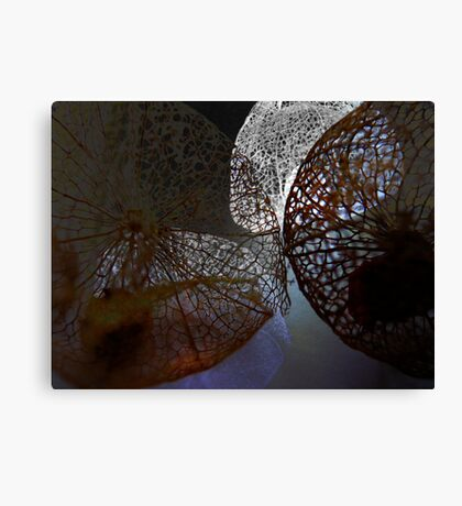 Strong Contrast Canvas Print