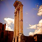 Temple of Castor and Pollux, Forum of Rome by Lisa Hafey