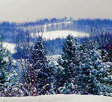 One Snowy Morning by KrysM