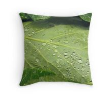 Lettuce Entertain You Throw Pillow