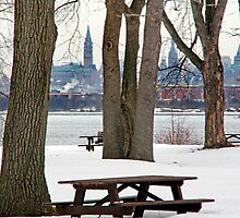 Bate's Island - Peace Tower - Ottawa by Debbie Pinard