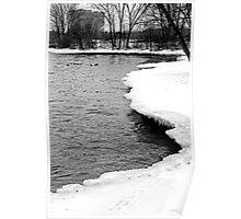 Ducks on the Ottawa River in Winter Poster