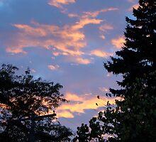 Suburban Sunset by fairielights