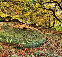 Padley Millstone Grindleford Derbyshire by Roy Childs