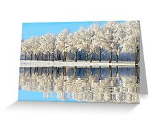 NATURES WINTER MIRROR Greeting Card