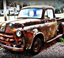 1954 Dodge Pickup Truck NEEDS HELP! by Debbie Robbins