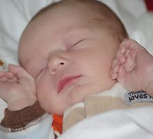 My New Grandson! by Karen Checca