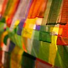Prayer flags by David Reid