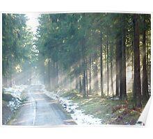 rays of white light Poster