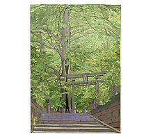 Ginko tree Yanesen Photographic Print