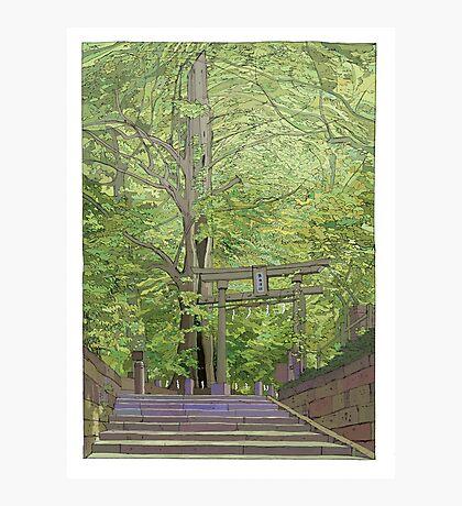 Ginko tree Yanesen Photographic Print