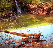 Autumn Stream by Linda Miller Gesualdo