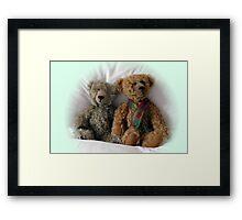 Care Bears Framed Print