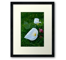 Flowers on a random person's grave.  Framed Print