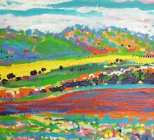 Canola spring by Kerry  Thompson