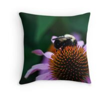 Bumble Bee on Cone Flower Throw Pillow