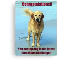 cute mutts challenge winner banner Canvas Print