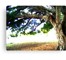 THAT Tree Canvas Print