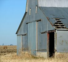 Silver Barn - New Douglas, IL by Tracy Engle