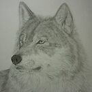 The Predator.......wolf portrait by Istvan Natart
