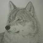 The Predator.......wolf portrait by Istvan froghunter