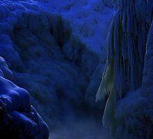 """""""Ice"""" by Elfriede Fulda"""