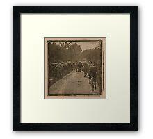 Cattle crossing head on Framed Print
