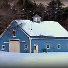 The Blue Barn by Monica M. Scanlan