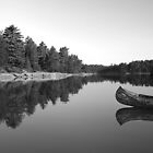 Canoes of Acadia by Barry J Merluzzo
