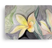 A Tropical Flower- Frangipani Canvas Print