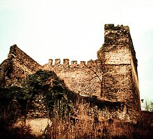 Burg Altwied, Germany by NicoleBPhotos