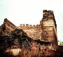Burg Altwied, Germany by NicoleBPhotos