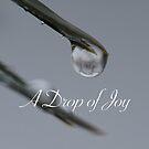 A drop of Joy by ZeeZeeshots
