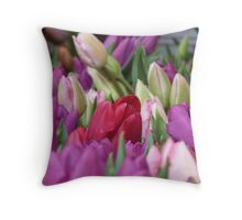 Multi-colored Tulips Throw Pillow